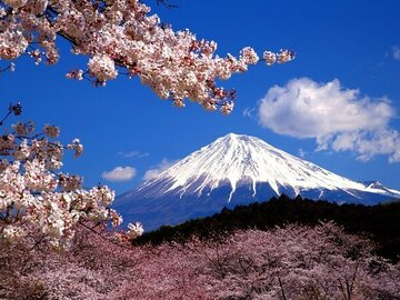 Offering: Virtual Tour to Discover Mount Fuji